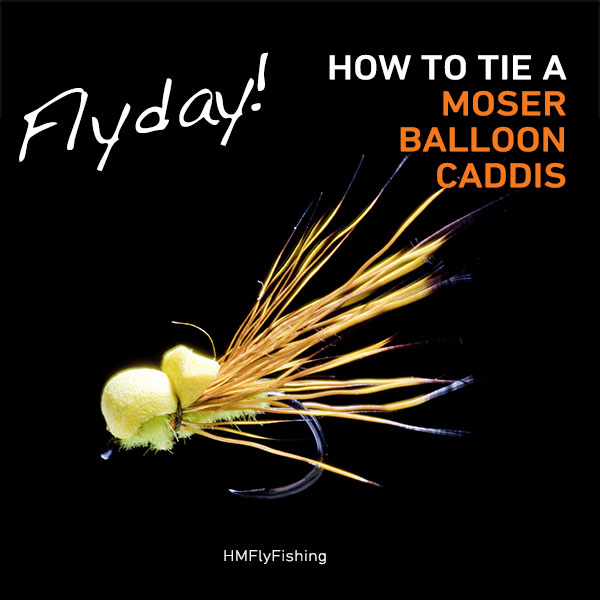 moser balloon caddis Fly Pattern Photo