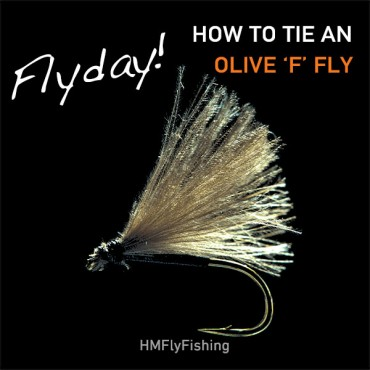 Olive F Fly Pattern Photo