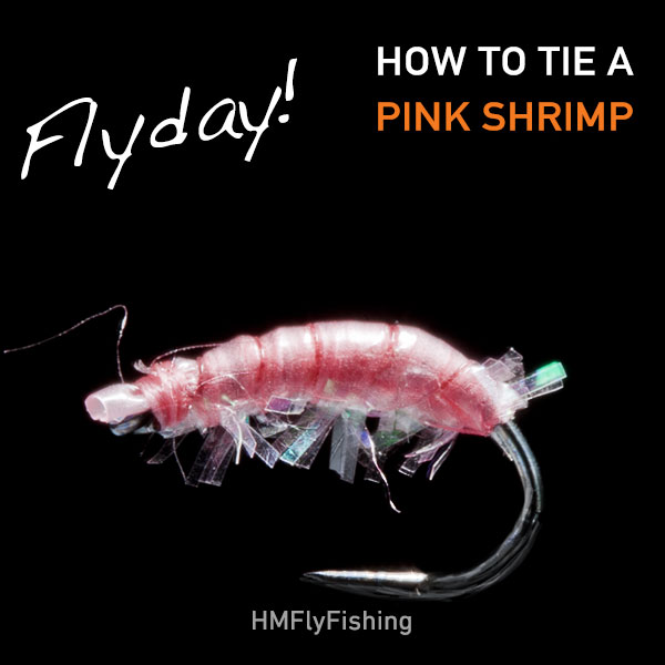 pink shrimp fly pattern