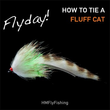 Flyday Fluffcat photo