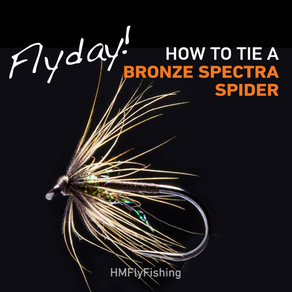 bronze spectra spider Fly pattern Photo